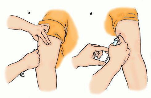 Как сделать, поставить укол кошке. Инъекции кошкам 11
