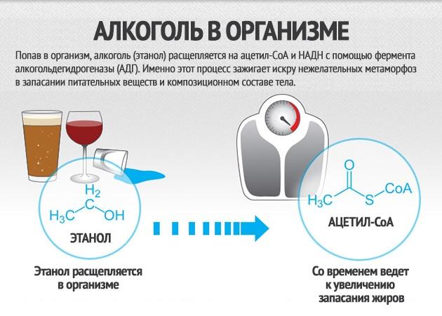 походы нейтрализовать алкоголь в организме чтоб не показал алкотестер аренду
