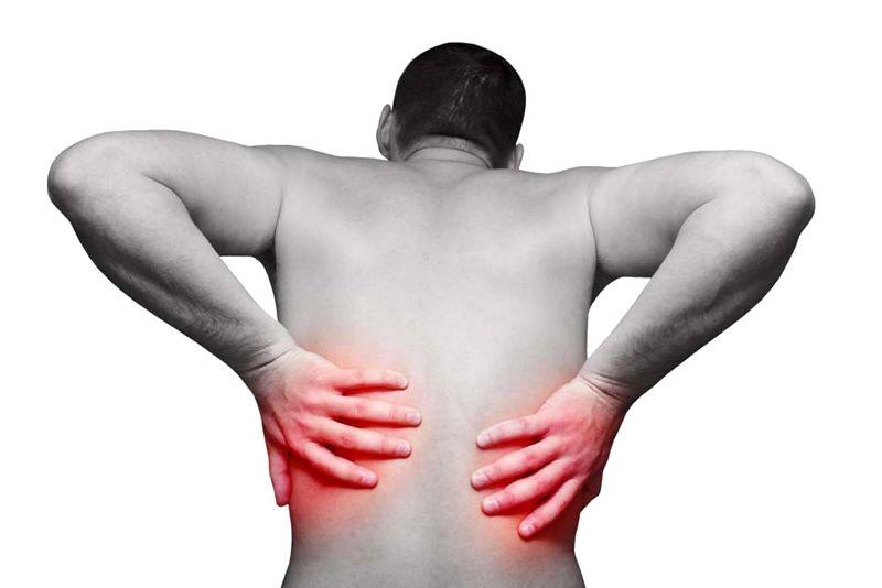 Болят почки после алкоголя: причины, симптомы и лечение