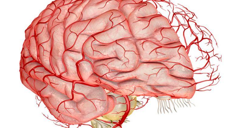 При МРТ головного мозга пить категорически нельзя